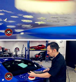 chemical guys shop all in one V4 polish sealant 2